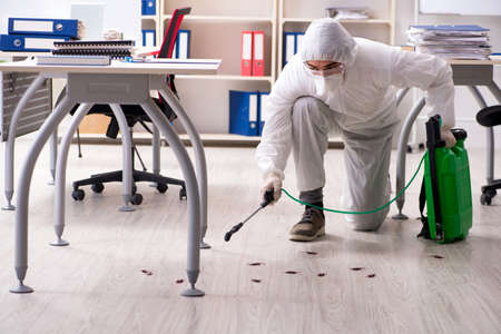 Foto de Professional contractor doing pest control at office - Imagen libre de derechos