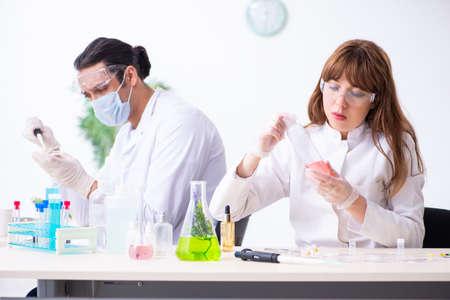 Photo pour Two chemists working in the lab - image libre de droit