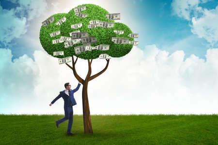 Foto de Businessman with money tree in business concept - Imagen libre de derechos