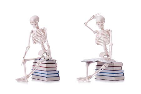 Photo pour The skeleton reading books on white - image libre de droit