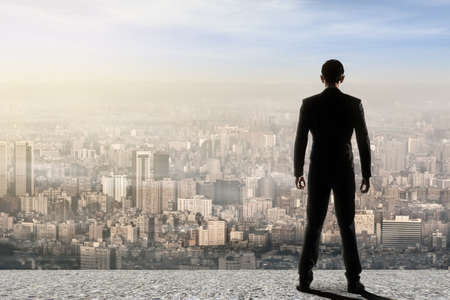 Concept of success with businessman standing on the roof and looking ahead for the opportunities. Rear view.