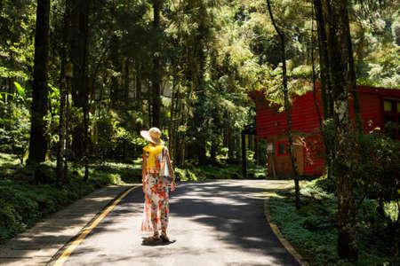 Photo pour traveling Asian woman hiking in the forest at Xitou, Nantou, Taiwan - image libre de droit