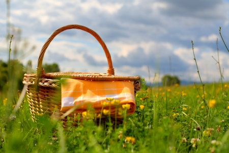 Picnic basket on a meadow, summer day