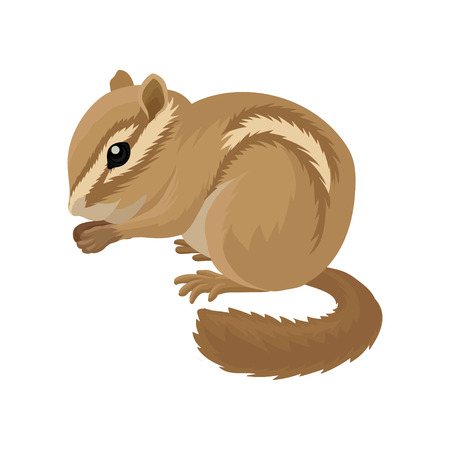 Illustration pour Flat vector icon of small brown chipmunk. Small mammal animal. Rodent with cheek pouches and light and dark stripes running down the body - image libre de droit