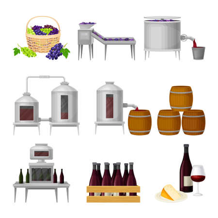 Illustration for Grape Wine Production with Alcoholic Fermentation and Pouring in Bottles Process Vector Set - Royalty Free Image