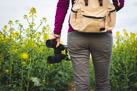 Hiking woman is holding binoculars. Bird watching in blooming oilseed field. Walking in nature