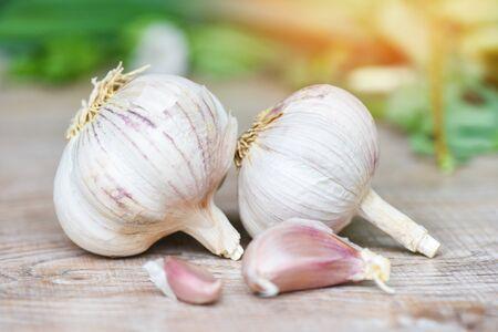 Foto für Garlic Cloves and Garlic Bulb / Vitamin healthy food spice for spicy cooking ingredient asian food - Lizenzfreies Bild