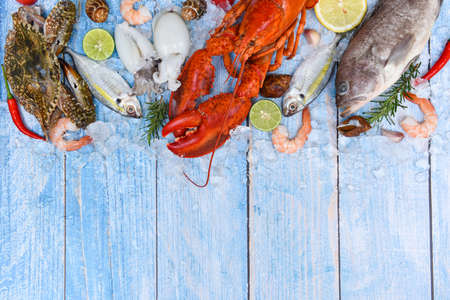 Photo pour Fresh fish and seafood plate with Shellfish shrimps prawns crab shell squid octopus crab lobster and fish ocean gourmet dinner - image libre de droit