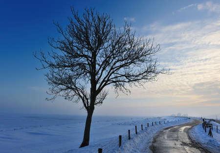Beautiful winter landscape in Enkhuizen the Netherlands