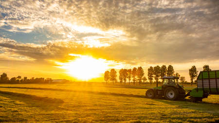 Photo for farming field at sunrise with farm tractor truck - Royalty Free Image