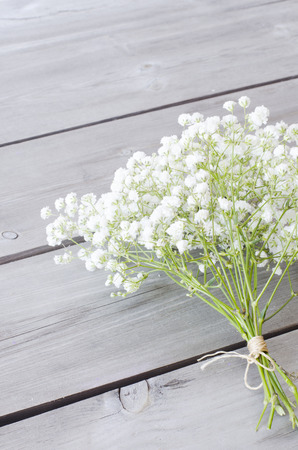 Gypsophila flowers on wooden background