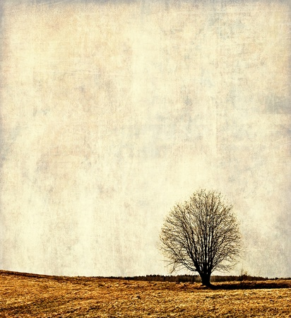 Vintage landscape, alone tree
