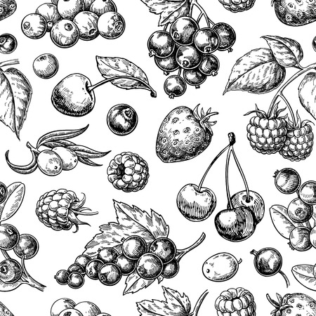 Illustration for Wild berry seamless pattern drawing. Hand drawn vintage vector background. - Royalty Free Image