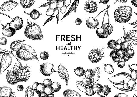Illustration pour Wild berry  vintage vector frame. Summer fruit set - image libre de droit