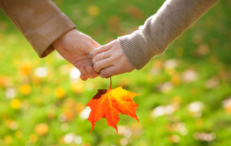 Male and female hands holding a red maple leaf