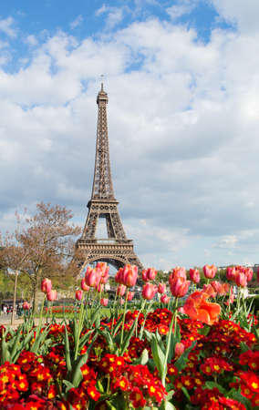 Tulips And Eiffel Tower