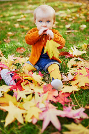 Foto per Adorable little girl sitting on the grass and playing with colorful autumn leaves on a fall day in park - Immagine Royalty Free