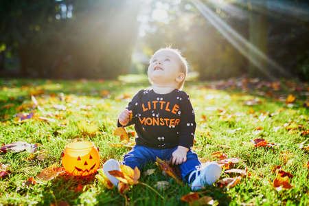 Photo for Adorable little girl in Halloween theme clothes sitting on the grass and playing with colorful autumn leaves and pumpkin bucket on a fall day in park - Royalty Free Image