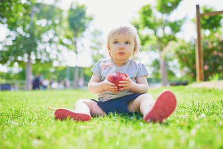 Photo pour Adorable little girl eating red apple outdoors in park on a sunny day. Toddler eating fruits. Healthy snacks for kids - image libre de droit