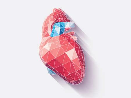 Ilustración de Vector illustration of human heart with faceted low-poly geometry effect, vector - Imagen libre de derechos