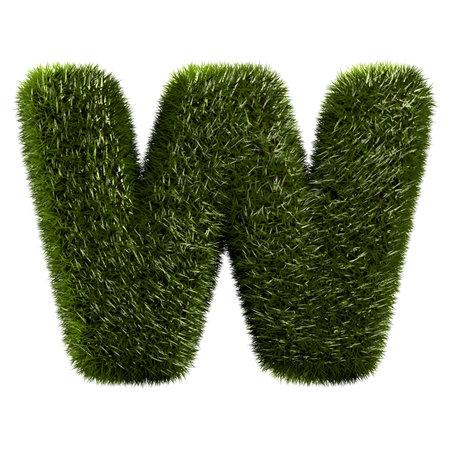 grass alphabet - W