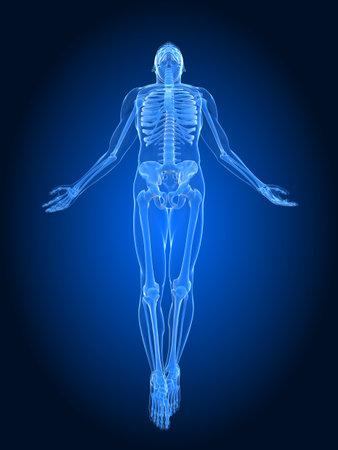 rising body - x-ray