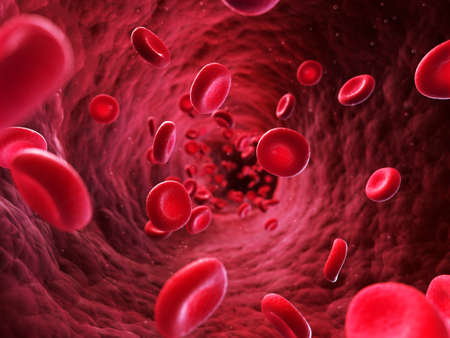 3d rendered illustration - blood cells