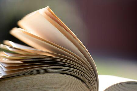 Photo pour Open book under sunlight outdoors. Education and wisdom concept - image libre de droit