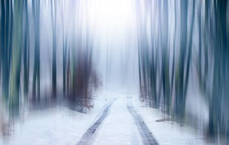 Photo for Forest fantasy landscape. Abstract motion blur of trees in a forest, road in focus. - Royalty Free Image