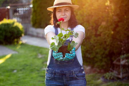 Photo for Female gardener smiling while holding flowering plant in the garden. - Royalty Free Image