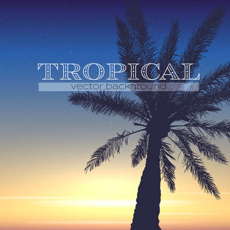 Illustration for Tropical background. Silhouette of palm and sunset sky on tropical background. Summer evening. Vector design for banners. - Royalty Free Image