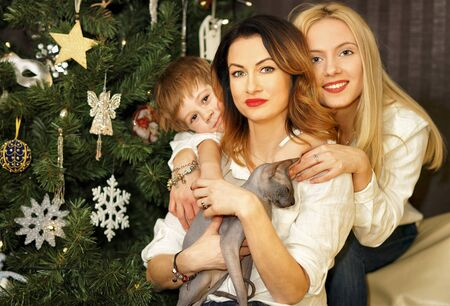 Beautiful family consisting of mother, daughter and son near Christmas tree. Mother holding Sphinx cat.
