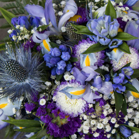 Photo for Bridal bouquet of Eryngium planum Blue Sea Holly with Gypsophila and iris - Royalty Free Image