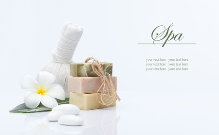 spa theme object on white background  banner  lots of copy space の写真素材