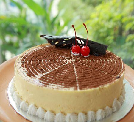 Photo pour Photograph of delicious tiramisu cake - image libre de droit