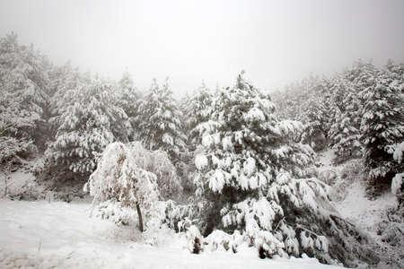 Photo pour Travel concept photo. Turkey / Izmir / Bozdag winter snow view. - image libre de droit