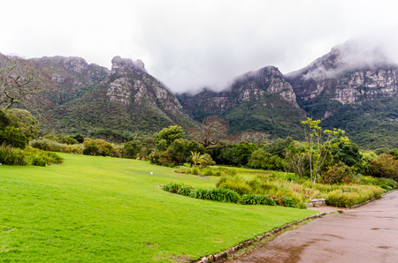 Kirstenbosch Botanical Gardens in Cape Town  South Africa
