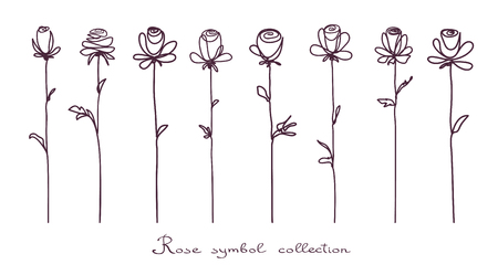 Roses  Collection of isolated rose flower sketch on white