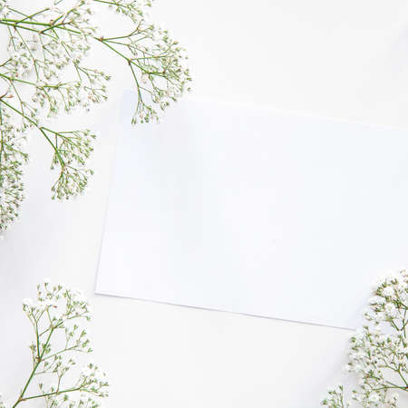 Photo for A white mockup surrounded by dried wild flowers - Royalty Free Image