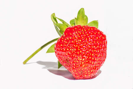 strawberry and white background
