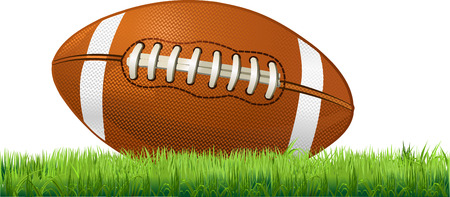 American Football in thr grass