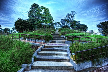 Mysterious staircase at MacRitchie