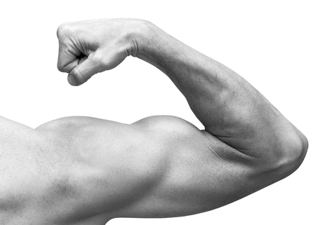 Photo pour Strong male arm shows biceps. Close-up black and white studio photo isolated on white - image libre de droit