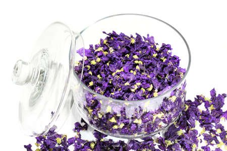 Mauve flowers dried in glass jar on white background