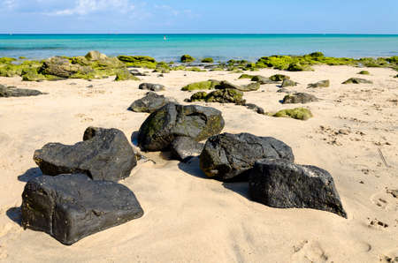Black volcanic rocks and moss-covered stones on the white sandy beach of Costa Calma, Fuerteventura