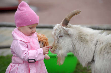 The little girl with a goat