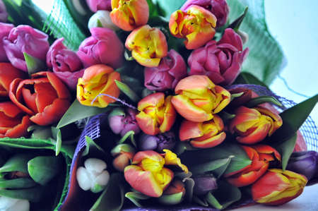 Several bouquets of tulips