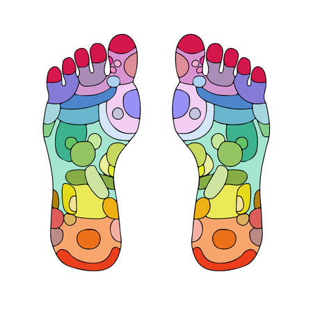Illustration for Reflexology foot massage points reflexology zones, massage signs and colored points - Royalty Free Image