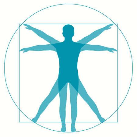 Ilustración de Vetruvian Man Leonardo Da Vinci, human anatomy - Imagen libre de derechos