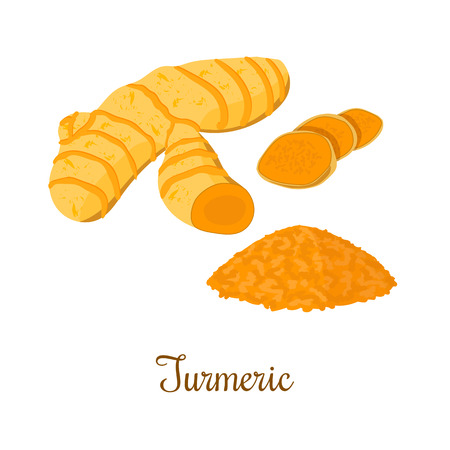Illustration pour Turmeric root with powder isolated on white background. Vector illustration. Spice symbol. For food design, restaurant, store, market, health care products. Can be used as price tag, label - image libre de droit